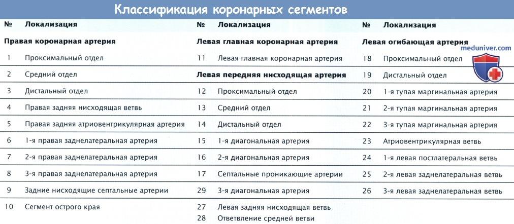 Классификация коронарных сегментов