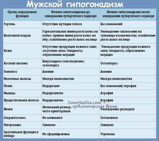 stimuliruyushaya-terapiya-dlya-usileniya-spermatogeneza