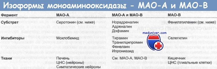 Изоформы моноаминооксидазы - МАО-А и МАО-Б - селегелин