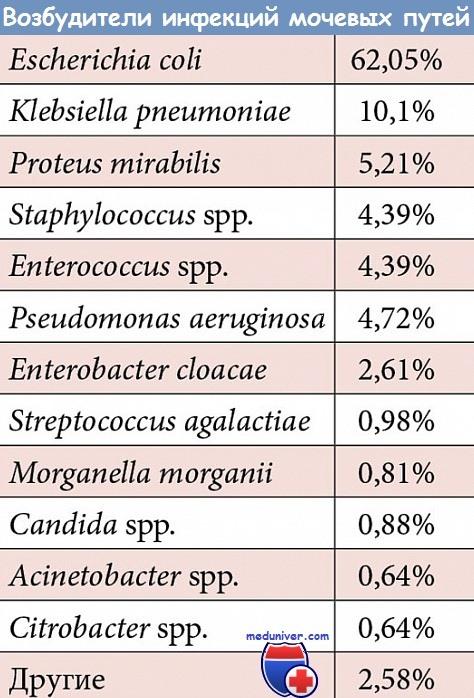 Выбор антибиотика при инфекции мочевых путей, простатите