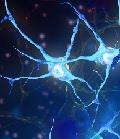 метаболические поражения нервной системы