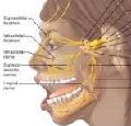 поражения черепных нервов