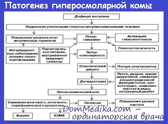 Патогенез гиперосмолярной комы