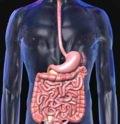 болезни кишечника детей