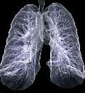 патофизиология дыхания