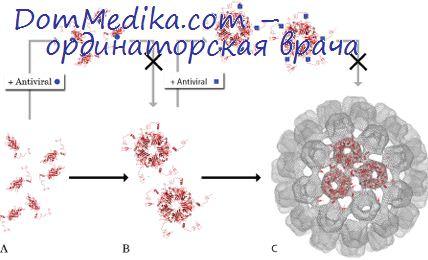 новые противовирусные препараты для лечения гепатита с