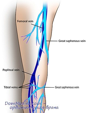 Таблетки от боли в ногах и венах